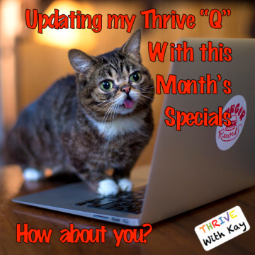 Lil Bub Updating Q